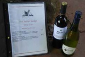 Wine South Africa Tourism